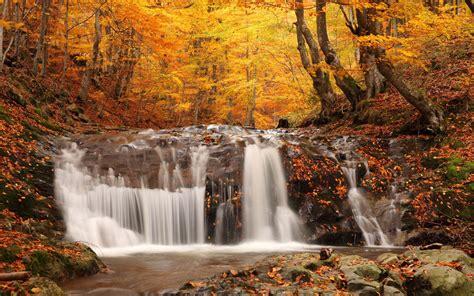 waterfall wallpaper for walls forest waterfall wallpaper 34057 1920x1200 px