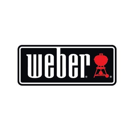 Cheminee D Allumage Weber by Kit Chemin 233 E D Allumage Rapidfire De Marque Weber Avec 2kg