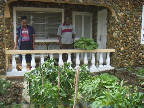 hoping to save millions antigua turns to backyard