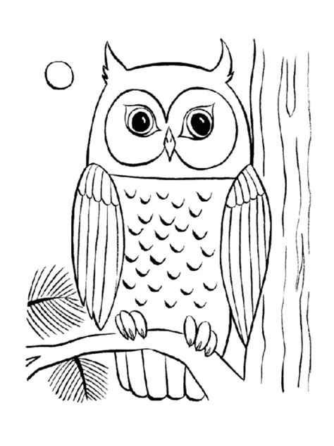 Free Printable Coloring Pages For Young Adults | coloring pages related adult coloring pages owl item