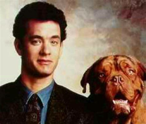 what of was in turner and hooch turner and hooch and photography