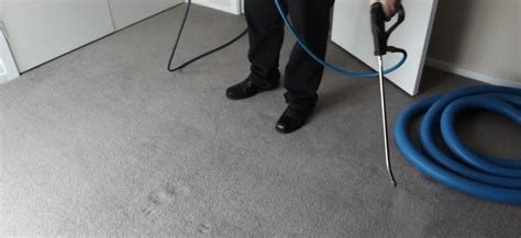 rug cleaning services melbourne carpet cleaning services melbourne grime fighters cleaning