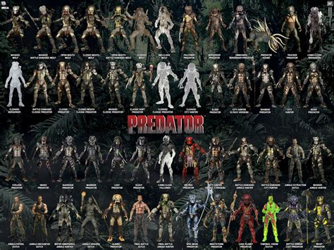 figure guide the updated visual guide for our predators line