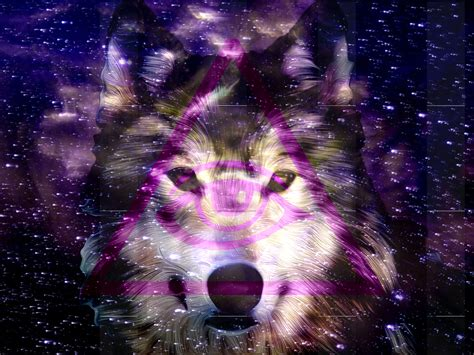 wallpaper galaxy wolf photo collection galaxy wolf hipster triangles