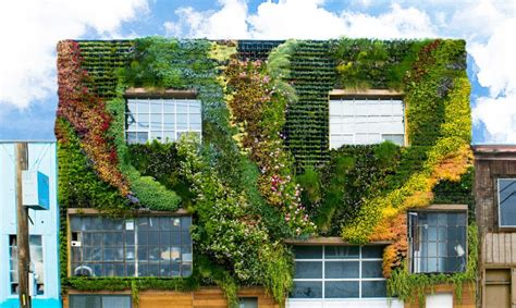 Picture Murals On Walls san francisco s first community built living wall is a