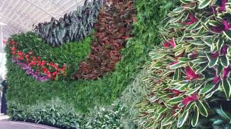 How To Make Vertical Garden Living Wall Plants On Walls Vertical Garden Living Wall Gallery