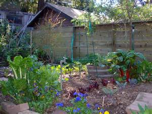 backyard garden various plants and flowers backyard garden house design