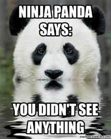 Cute Panda Memes - ninja panda words of wisdom