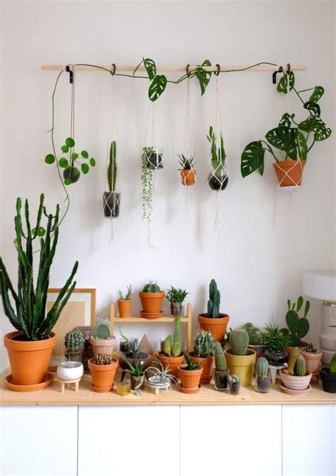 diy hanging plant wall  macrame planters indoor