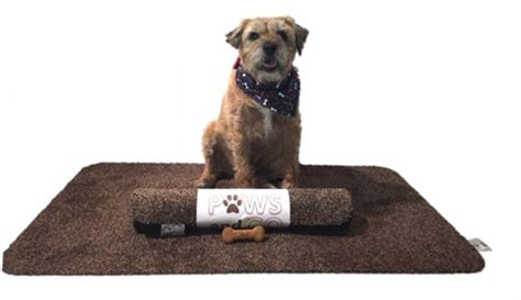 paws and go doormat teaches your pet to wipe its own