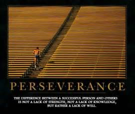 Perseverance the blog s first 90 days