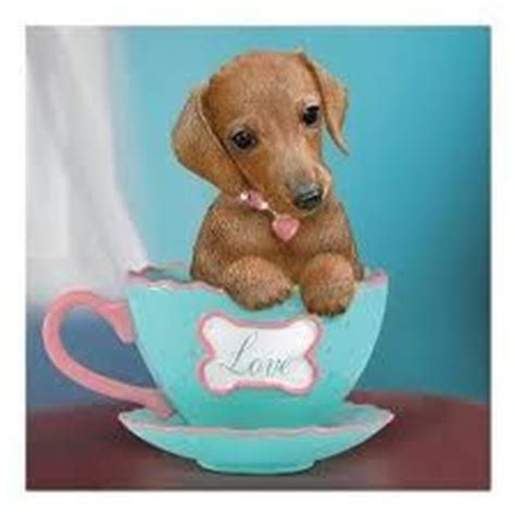 teacup wiener the world s catalog of ideas