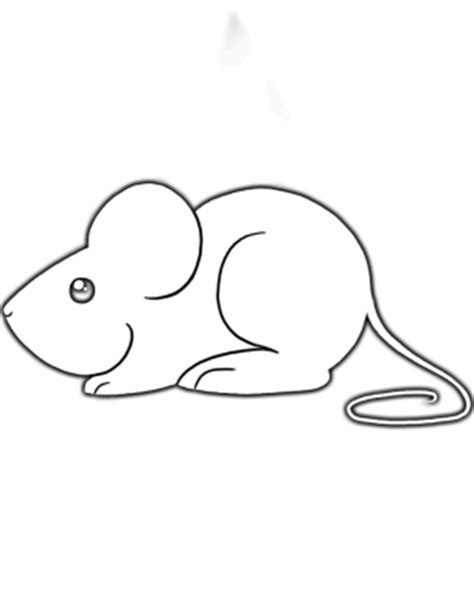 Mouse Template by Mouse Activities