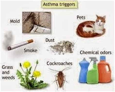 allergy induced asthma symptoms causes treatment and
