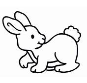 Rabbit In To Colouring Pages