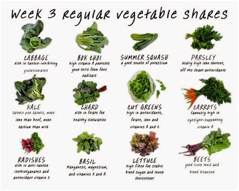 vegetables with 0 calories green vegetables calories