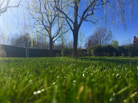 il giardino degli angeli il giardino un luogo dove fiorire e rifiorire il