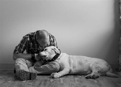 way to euthanize at home peaceful endings for pets how to prepare for your pet s at home euthanasia visit at