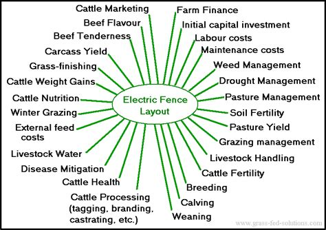 Grass Fed Cattle Farm Plan Fencing Business Plan Template