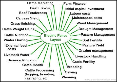 Grass Fed Cattle Farm Plan Farm Management Plan Template