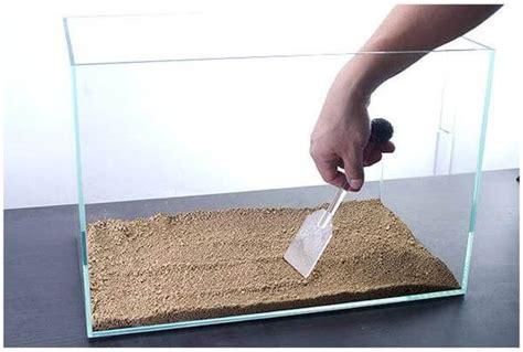Merk Pupuk Dasar Aquascape Terbaik 7 cara membuat aquascape yang murah dan sederhana cara