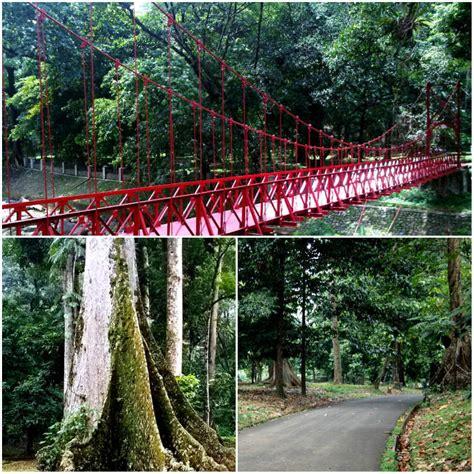 Bogor Botanical Garden Bogor The Botanical Garden Or A Culinary Adventure A Travellers Journey A Travellers Journey