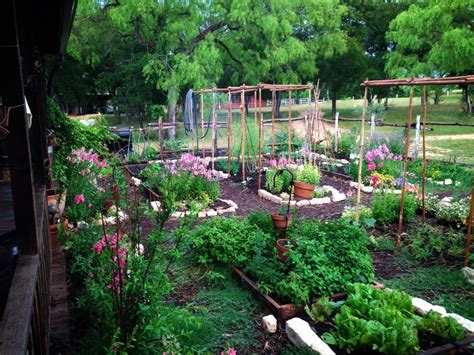 permaculture vegetable garden layout design installation maintenance hill country natives