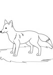 fox coloring free coloring pages