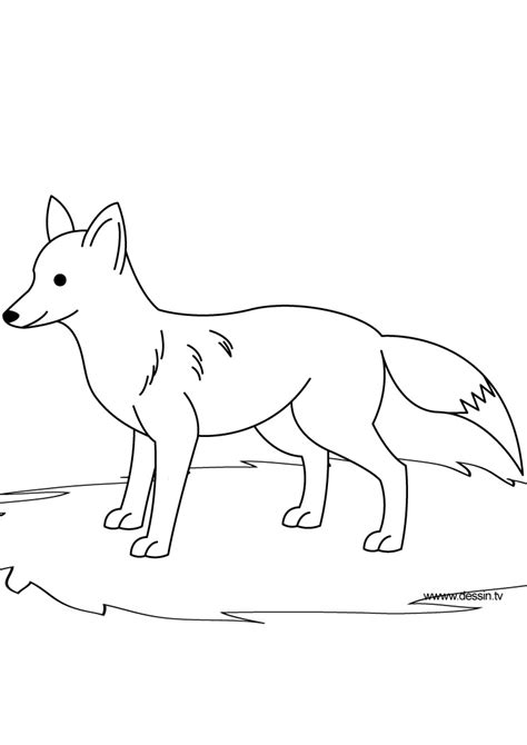 simple fox coloring coloring pages