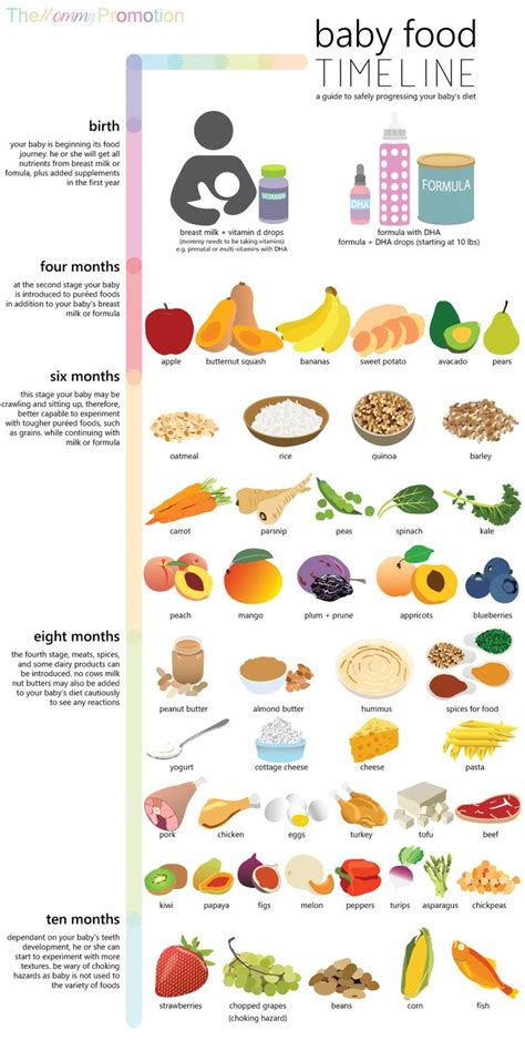 food the best nutrition for your four legged friend books 25 best ideas about baby foods on baby food
