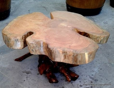 Naturally Unique Cypress Tree Trunk Handmade Slab Coffee Tree Log Coffee Table