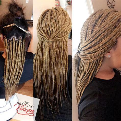 small braids color schemes best 25 small box braids ideas on pinterest small box
