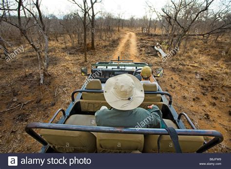 african safari car game drive adventure south africa jeep vehicle people