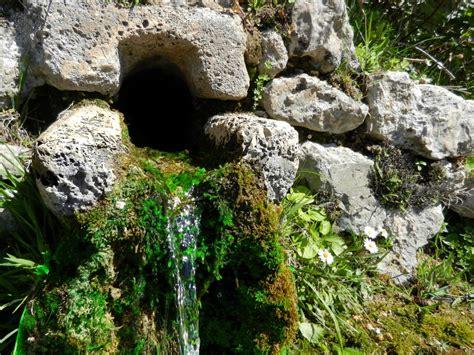 le vogelkäfig fig 8 fontanile le fontanelle comitato per la