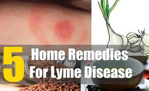 home remedies for ticks 5 home remedies for lyme disease treatments