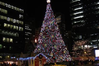 dsley plaza christmas tree chicago tree gets new home at millennium park downtown chicago dnainfo