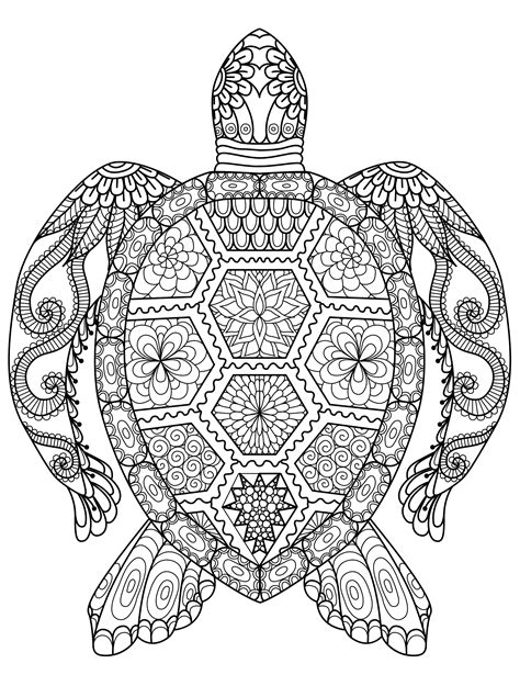 Coloring Pages For Adults Turtles | 20 gorgeous free printable adult coloring pages page 3