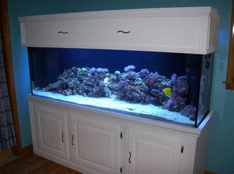 blue small aquarium designs aquarium substrate for small koi