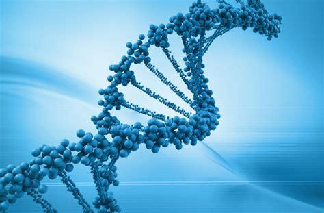 cadena de l adn encuentran un lenguaje oculto en el c 243 digo gen 233 tico la