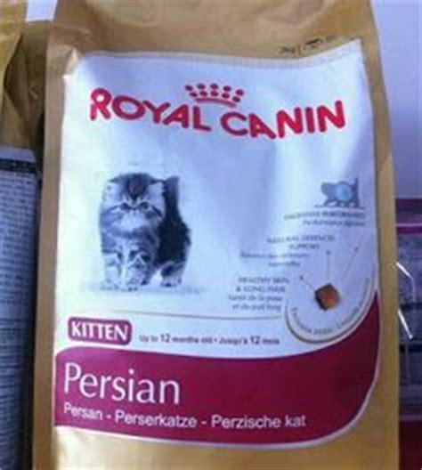 Makanan Kucing Royal Canin Babycat 4 Kg jual anak kucing murah di tangerang bekasi depok peaknose murah di sabah anggora murah