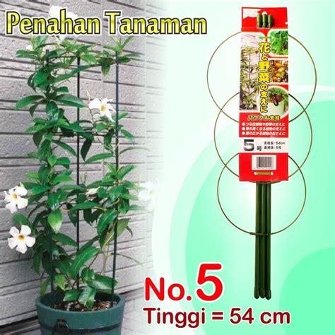 Pupuk Untuk Bunga Dan Buah Cabe penyangga tanaman pohon bunga buah rambat cabe tomat
