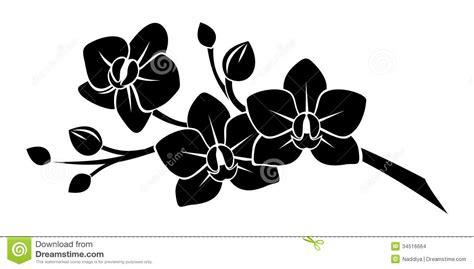 habrumalas orchid stencil images