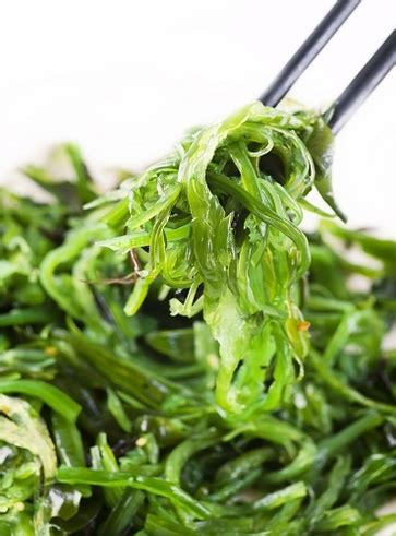alga spirulina 12 alimenti vegetali ricchi di ferro