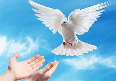 imagenes de dios jesus y espiritu santo oraci 243 n al espiritu santo las mejores oraciones
