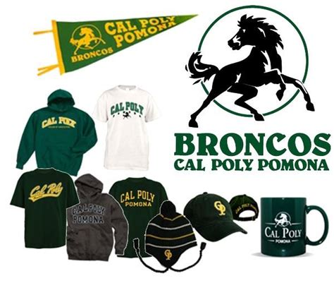 cal poly colors cal poly pomona your green and yellow broncos gear