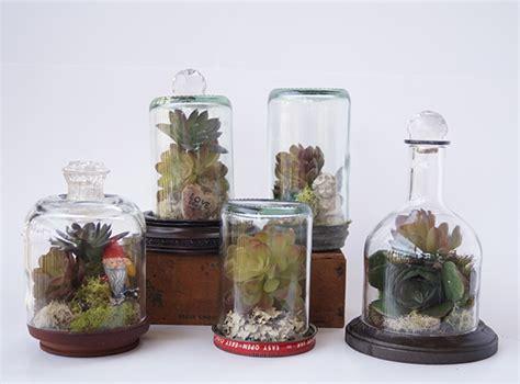 upcycle wine bottles to terrarium wonderlands