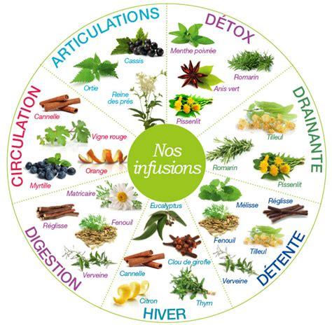 Y A Til Des Bienfaits A La Detox by 192 L Unith 233 Infusion De Plantes