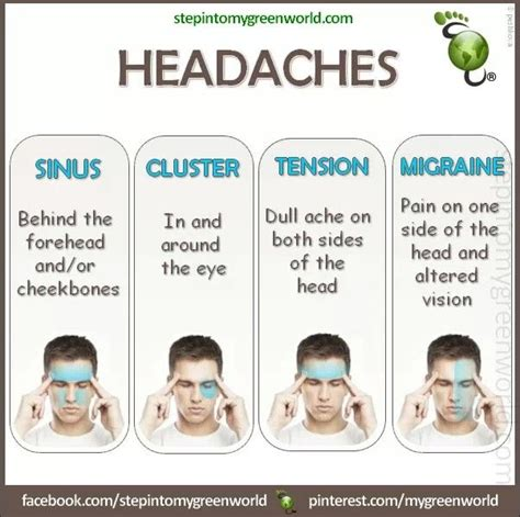 And Migraines Is It In Your by 8 Best Images About Sinuses And Headaches On