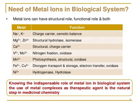 the role of ions in body chemistry bob mccauleys blog copper ii complexes as anticancer agents