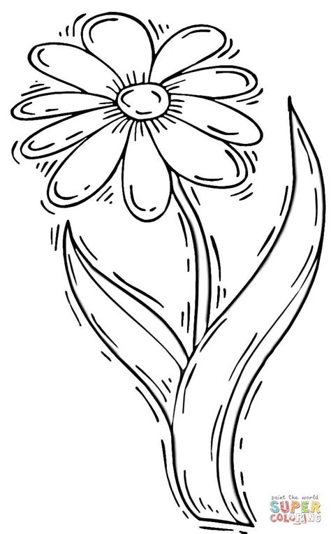 free coloring pages daisy flower daisy flower coloring page free printable coloring pages